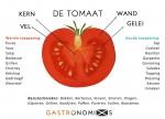 tomaat_2.jpg